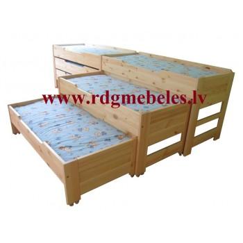 Priedes gulta BD-P3